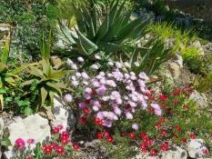 Bordure fiorite dei giardini Hanbury